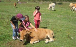 actividades-naturaleza-asturias